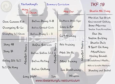 chinese martial art kungfu curriculum