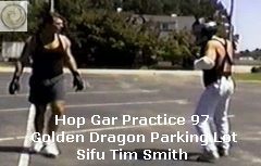 tw smith hop gar kung fu training
