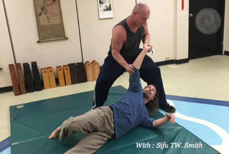 joint lock,chin na, qin na,sifu tw smith,raleigh