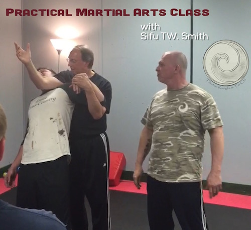 practical,martial arts,joint locks,qin na
