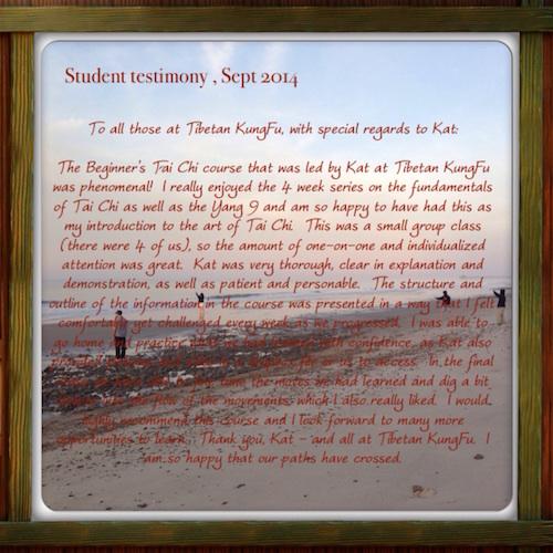 yang 9 testimony raleigh taiji course