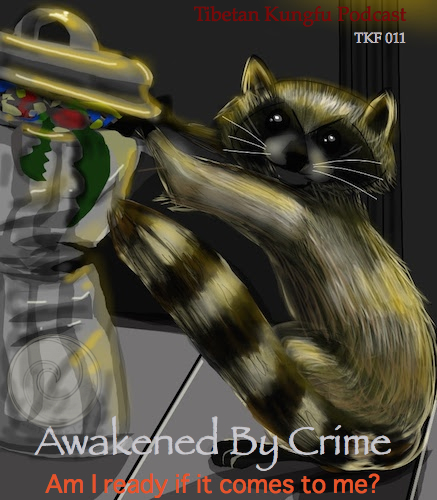 kungfu podcast awakened by crime 11 racoon