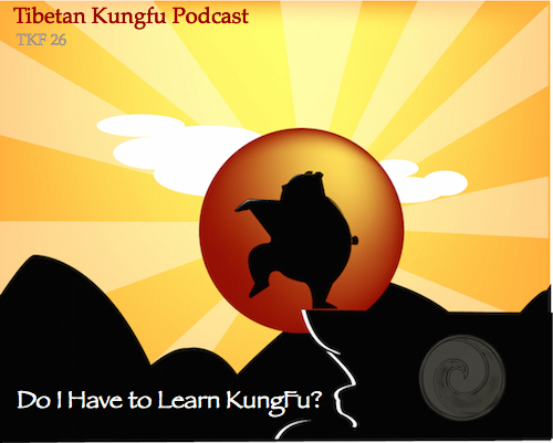 learn kungfu