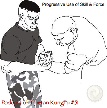martial arts,skill,force