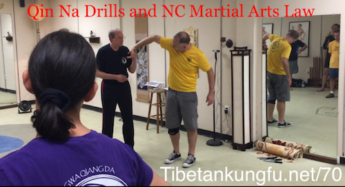 qin na,martial arts,joint lock,raleigh