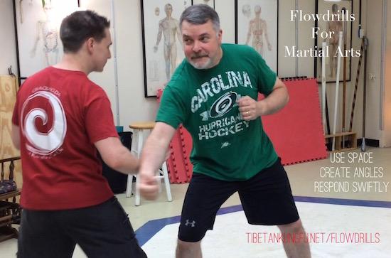 martial art flowdrills